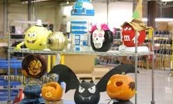 TyRex Photo: Halloween Pumpkin Contest (2)