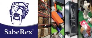 TyRex Graphic: SabeRex Custom Technology Solutions