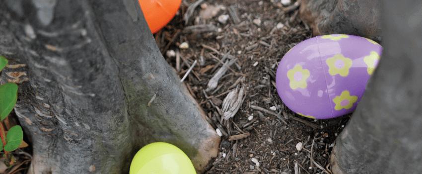 TyRex Photo: Easter Celebration 2014