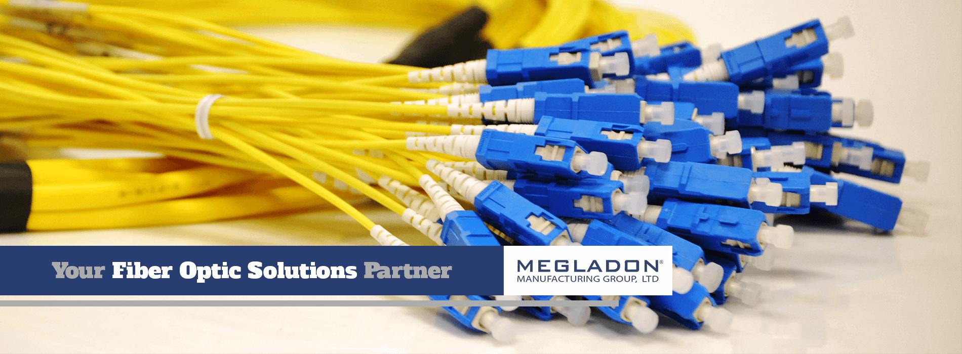 TyRex Photo: Megladon Manufacturing Group, Ltd.